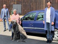 Mobile Tierheilkundepraxis in Selb