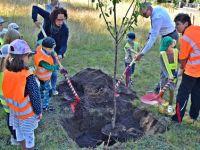 Wiesenfest-Baumpflanzaktion auch im Corona-Jahr
